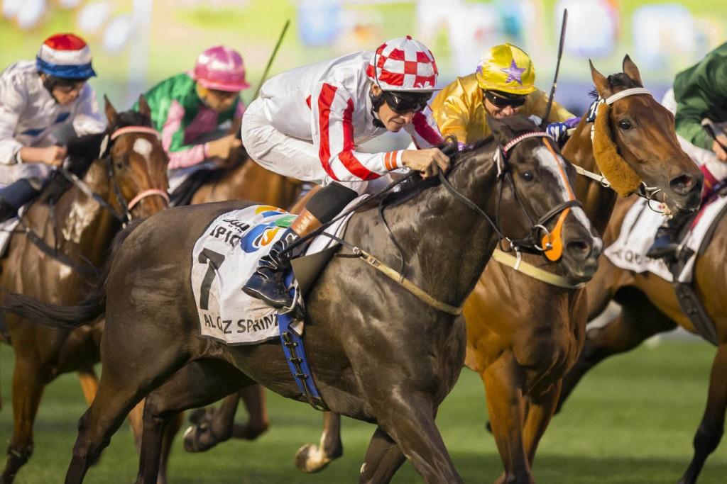 HIPPISME : Dubai World Cup - Hippodrome de Meydan - 28/03/2015 - beIN SPORTS